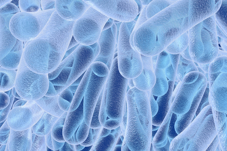 Legionella Testing Lytham St  Annes & Lancashire - The Gas Guy